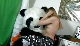 Gorgeous femme fatale is squeezing her tits while sucking panda's johnson